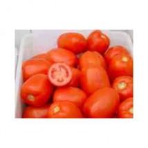 Pomidor Dyno 2500n